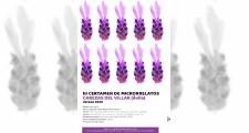Bases del Concurso de Microrelatos 2020