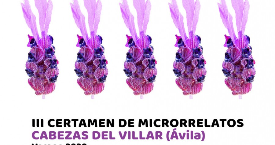 III Certamen de microrrelatos 2020